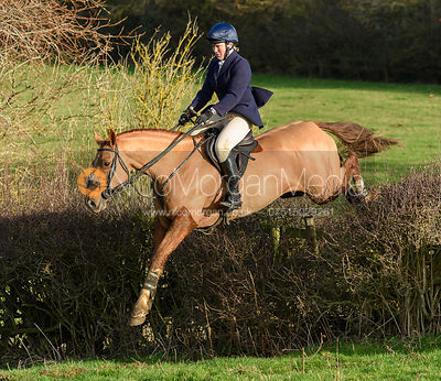 Emilie Chandler Jumping a hedge near Waltham. The Belvoir Hunt meet at Waltham House 22/12