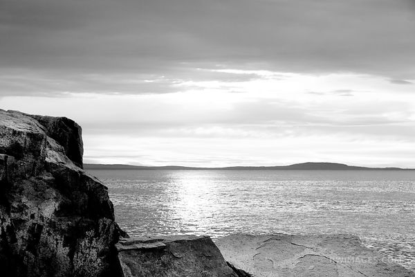 ACADIA NATIONAL PARK ATLANTIC COAST AT OTTER COVE BLACK AND WHITE