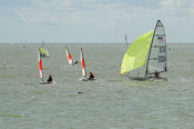 Dinghy racing in Brightlingsea