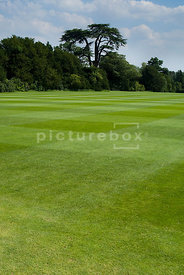 An image of a beautiful lawn on a country estate