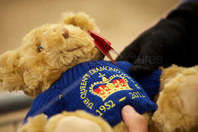 Teddy with Royal Crest as Crowds Prepare to see The Queen