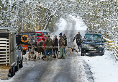 Cottesmore Hound Exercise in Owston Woods