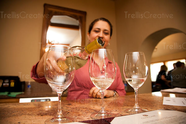 Server pouring white wine into wine glasses in tasting room