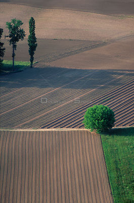 Aerial view of cultivated farmland, Dordogne, France
