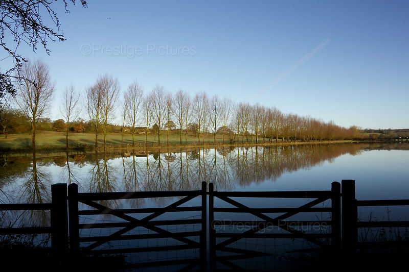 Reflection Of Trees Across a Flooded Field with Farmgate in Foreground