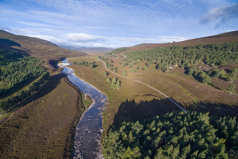 River Dee flowing through moorland with patches of Scots pine (Pinus sylvestris), Deeside, Cairngorms National Park, Scotland...