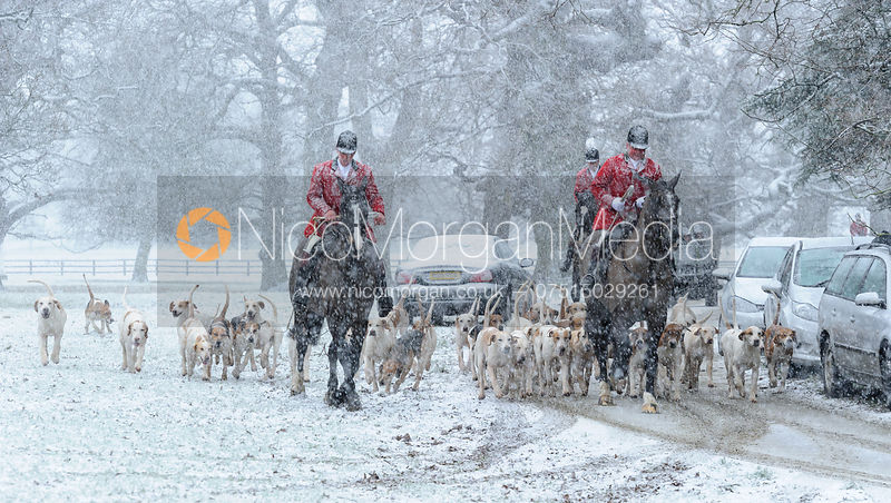 Woodland Pytchley Hunt