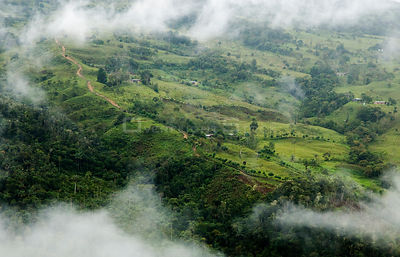 Aerial view of cloud forest cleared for pasture near to populations of Yellow-tailed woolly monkeys, Alto Mayo, Amazonas, Per...