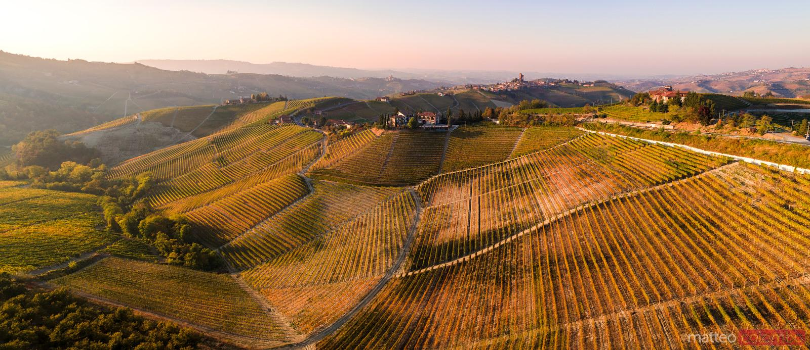 Aerial view over vineyards and town, Piedmont, Italy
