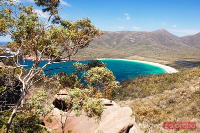 Wineglass bay, elevated view, Tasmania, Australia