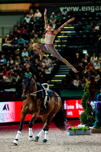 FEI Vaulting World Cup™