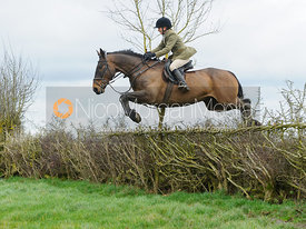 Alice Robb jumping a hedge above Klondike