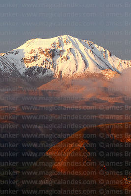 View of Nevados de Putre / Taapaca volcano at sunset, Region XV, Chile
