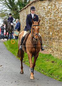 Jane Hubbard - The Cottesmore Hunt at Tilton on the Hill, 9-11-13