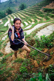 Young Hmong Woman Clearing Weeds from Side of Rice Paddy