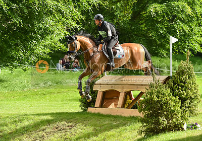Thibaut Vallette and QING DU BRIOT ENE HN, Equitrek Bramham Horse Trials 2018