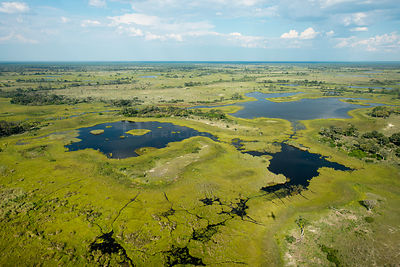 Aerial photograph of the Okavango Delta, UNESCO World Heritage Site, featuring, swamp, pools and channels created by Hippopot...