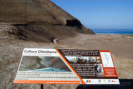 Panel with information about Chinchorro culture and mummies, Bahia Camarones, Region XV, Chile