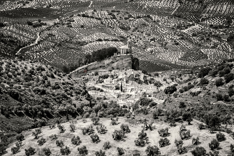 Distant View of the White Town of Montefrío Surrounded by Olive Trees