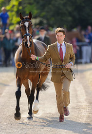 Harry Meade and WILD LONE - Mitsubishi Motors Badminton Horse Trials 2013