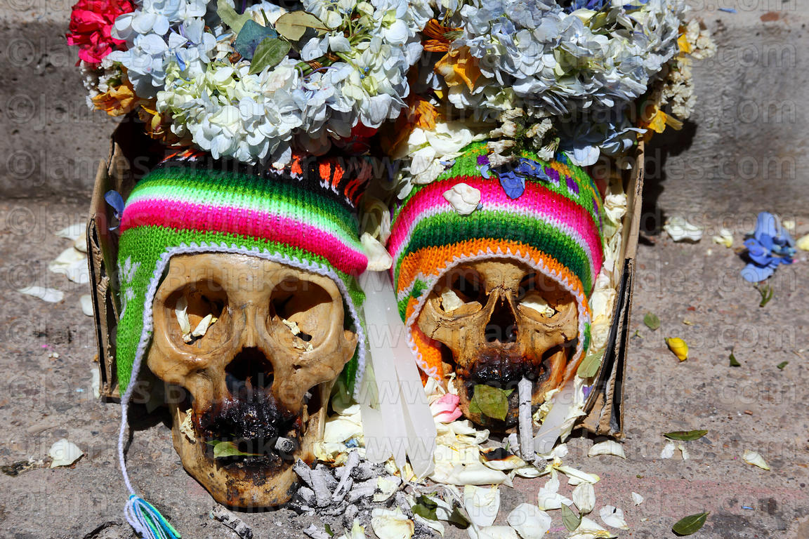 Skulls wearing typical woollen hats (called chullus or chullos), Ñatitas festival, La Paz, Bolivia