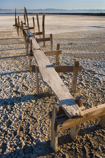 High and Dry at the Salton Sea