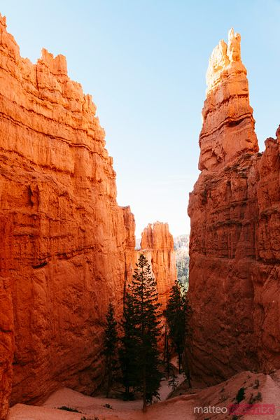 Wall Street, Bryce Canyon National Park, USA
