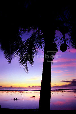 Sunset couple 3, Cook Islands