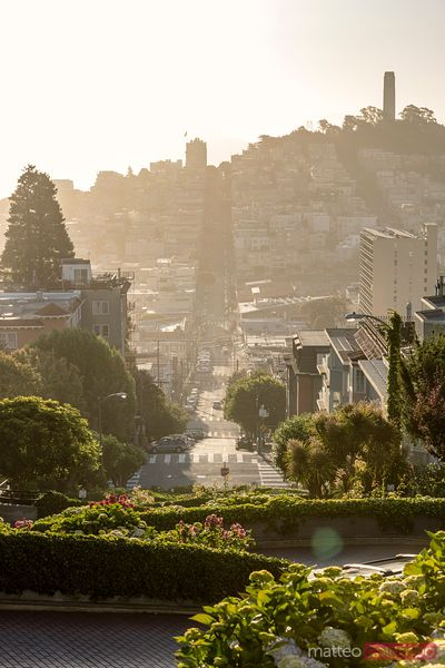 Lombard street and russian hill at sunset, San Francisco, USA