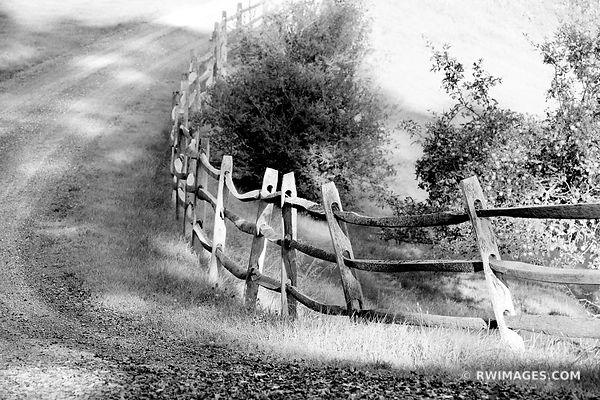 COUNTRY ROAD WOODEN FENCE VERMONT BLACK AND WHITE