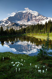 Mount Rainier reflected in tarn above Mystic Lake in Mount Rainier National Park, Washington, USA, August 2014.