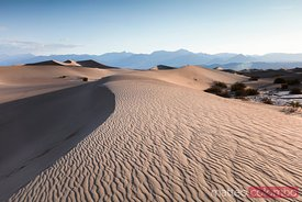 Mesquite Flat Sand Dunes, Death valley , USA