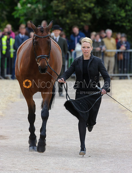 Megan Heath and ST. DANIEL - First Horse Inspection, Mitsubishi Motors Badminton Horse Trials 2014
