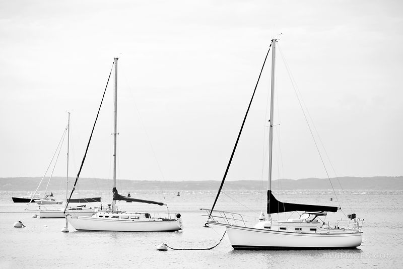 SAILBOATS IN HARBOR WOODS HOLE CAPE COD MASSACHUSSETTS BLACK AND WHITE