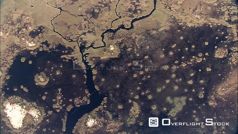 Aerial shot of drier areas of the Okavango Delta Okavango Delta Botswana Botswana
