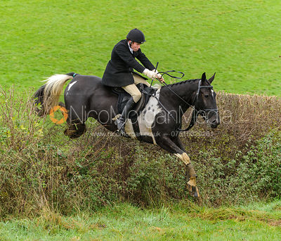 James Duncan - The Cottesmore Hunt at Tilton on the Hill, 9-11-13
