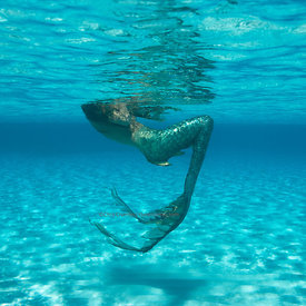 Mermaid in shallow water, Playa Palencar, west side, Cozumel, Mexico