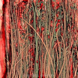Qualia_s_Grass_Antique_Red_Russell_Kightley