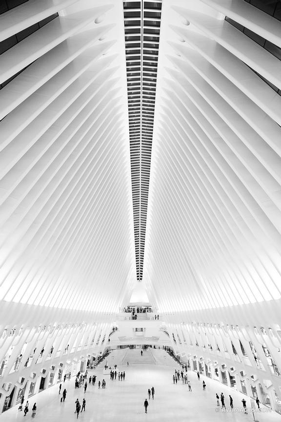 OCULUS WORLD TRADE CENTER MANHATTAN NEW YORK CITY NEW YORK BLACK AND WHITE VERTICAL