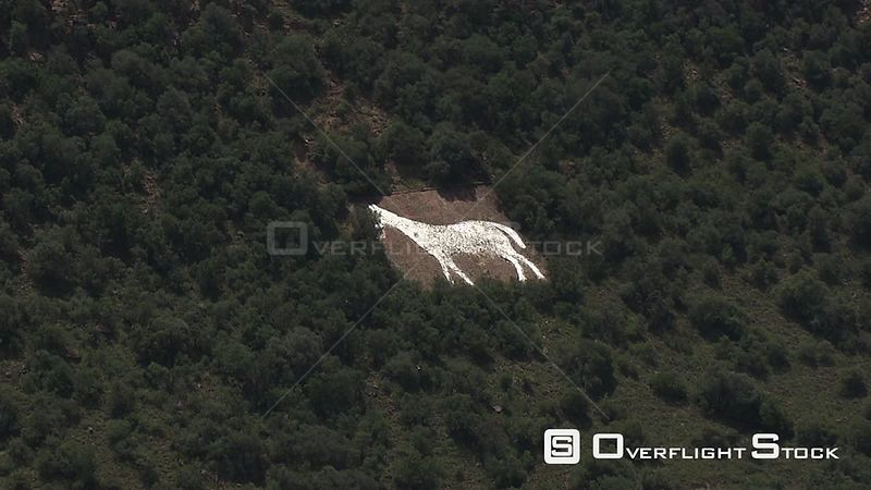 Aerial shot of a painting of a horse on a rock on a hill in Bloemfontein Bloemfontein Free State South Africa