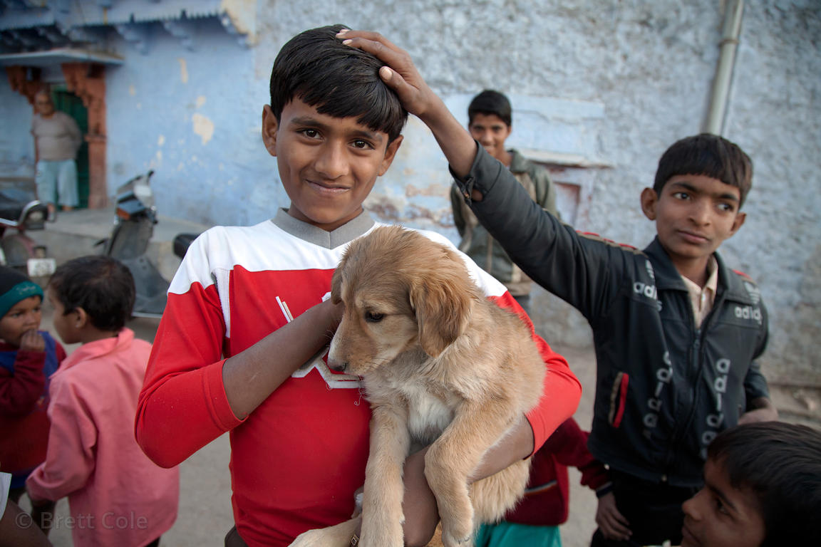Children show off a stray puppy, one of thousands in Jodhpur, Rajasthan, India