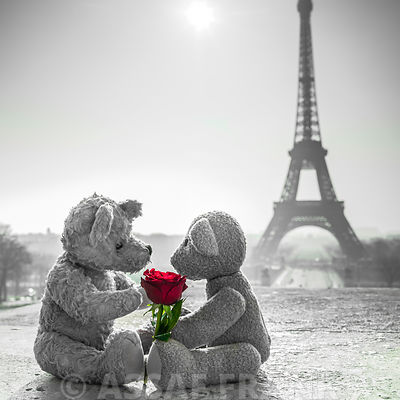 Two Teddy bears with a rose next to the Eiffel tower