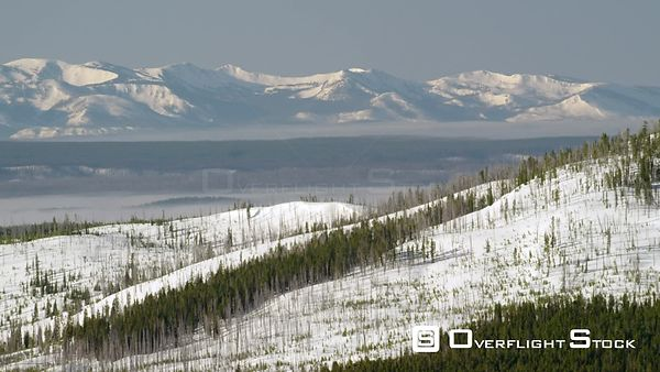 Northern forests of Yellowstone National Park with snow covered mountain peaks and low clouds