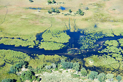 Aerial view of the Okavango delta with channels, lagoons, swamps and islands, Botswana, Africa