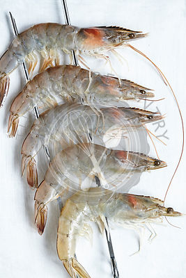 Five Raw Whole Prawns on Skewers