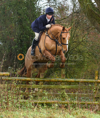 Harriet Rimmer jumping a hunt jump in Holwell. The Belvoir Hunt at Hill Top Farm 1/12