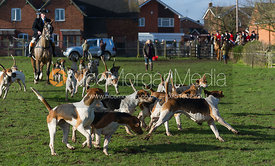 Michael Lane MFH and Atherstone hounds