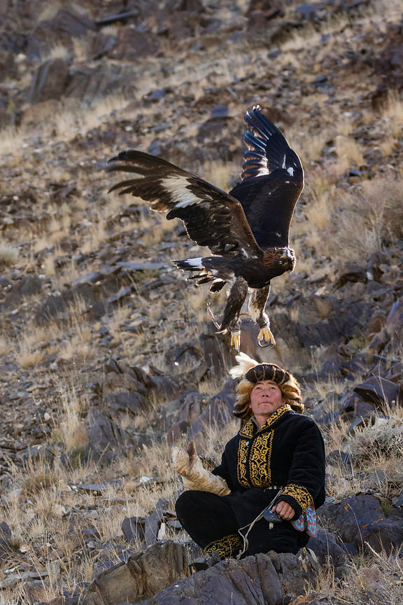A Golden Eagle Hunter Releasing his Bird