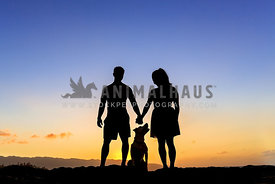 Silhouette of dog family