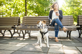 Young woman on her phone with her dog in a park